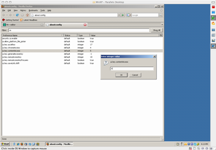 Change Access Key in Windows Firefox 2